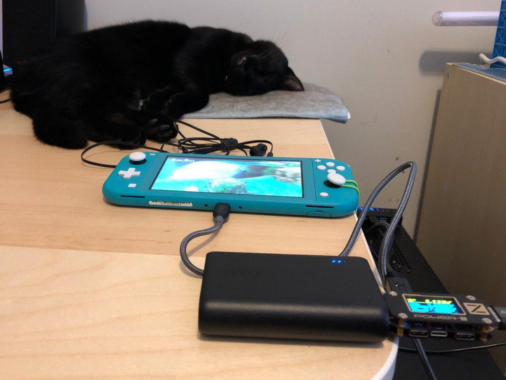 Nintendo Switch Lite USB-A testing