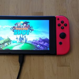 Quntis PD Fast Charger and Cable with Nintendo Switch