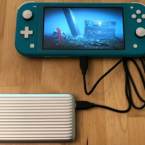 SP QP66 PD with Nintendo Switch Lite
