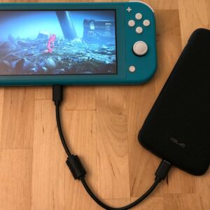 SP QP75 PD with Nintendo Switch Lite