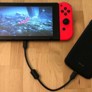 SP QP75 PD with Nintendo Switch