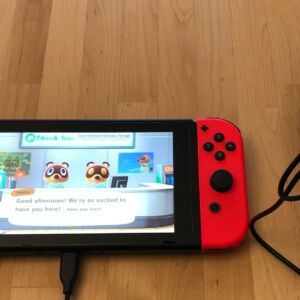 Silicon Power Boost Charger QM15 with Nintendo Switch